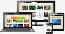 responsive-wordpress-design